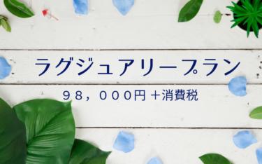 【ワードプレス制作】ラグジュアリープランの詳細